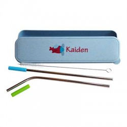 Personalized Case with Straws - Plane