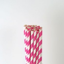 Paper Straw - Hot Pink Stripes, 25pcs