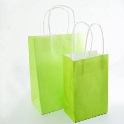 Paper Gift Bag - Light Green, 10pcs