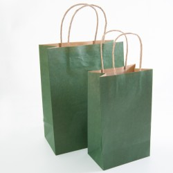 Paper Gift Bag - Green, 10 pcs