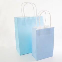 Paper Gift Bag - Light Blue, 10 pcs